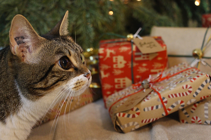 emballer-cadeaux-6